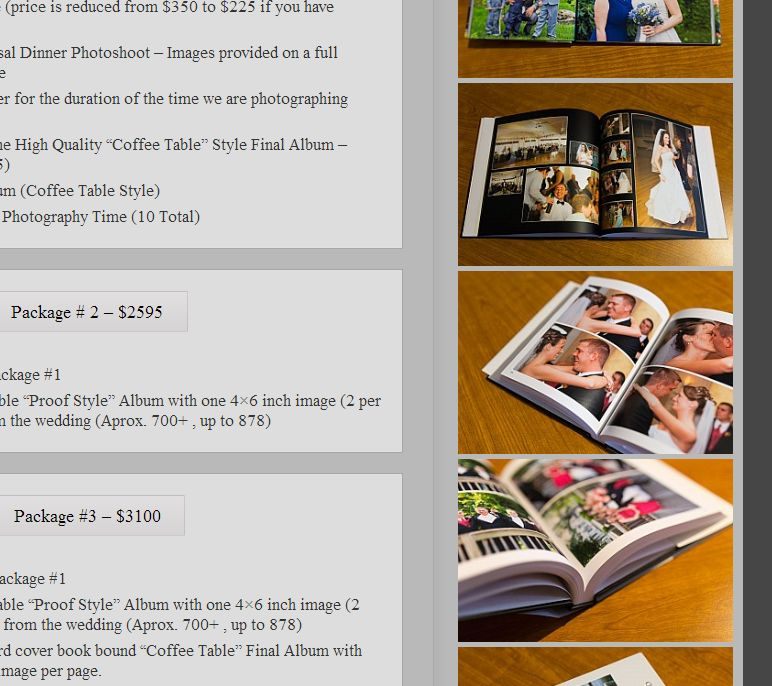 Wedding Album Sample Images On Pricing Page