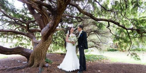 Rockwood Carriage House Wedding, Wilmington Delaware