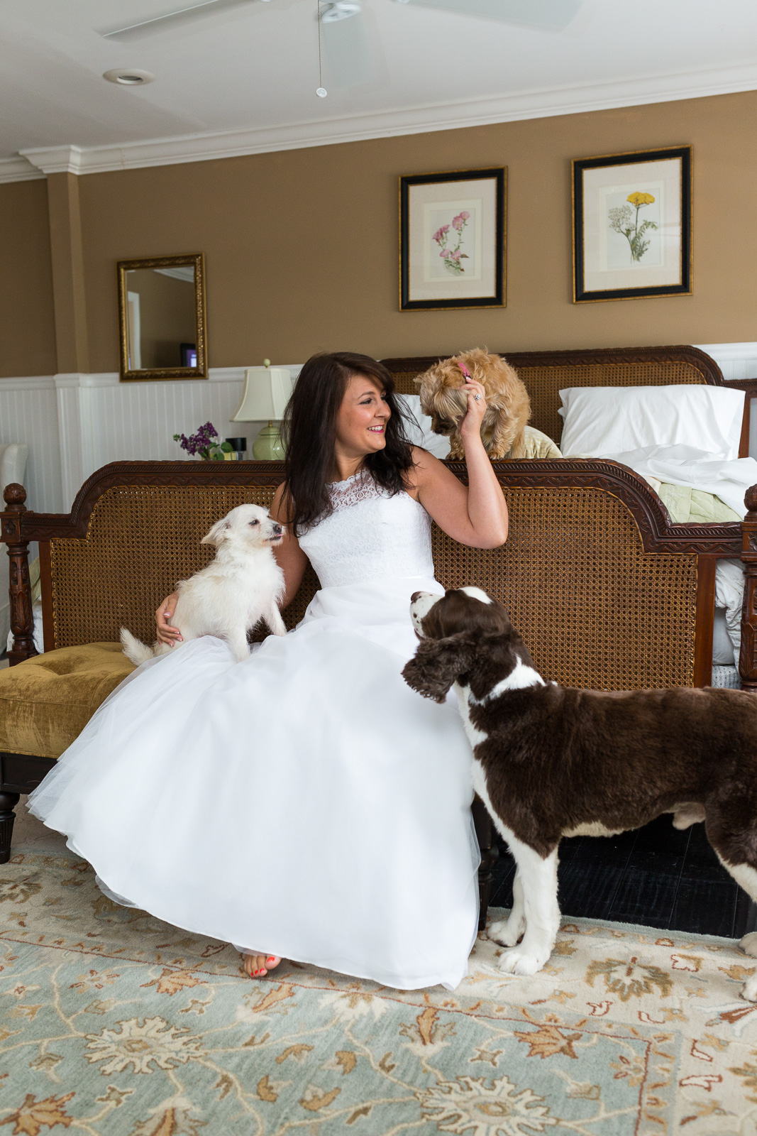 Bride and her dogs